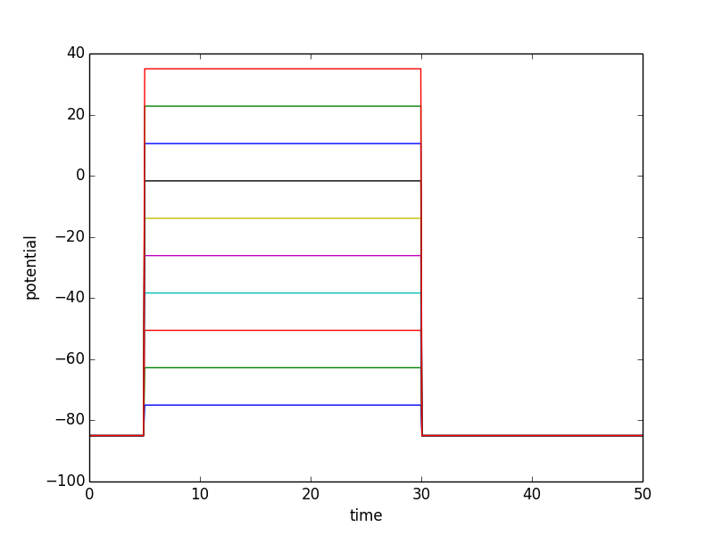 Illustrative simulation results when executing this simulation experiment several times with different clamp potentials in the voltage clamp protocol.